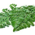 Penuh Nutrisi, Ketahui Apa Manfaat Moringa untuk Kulit